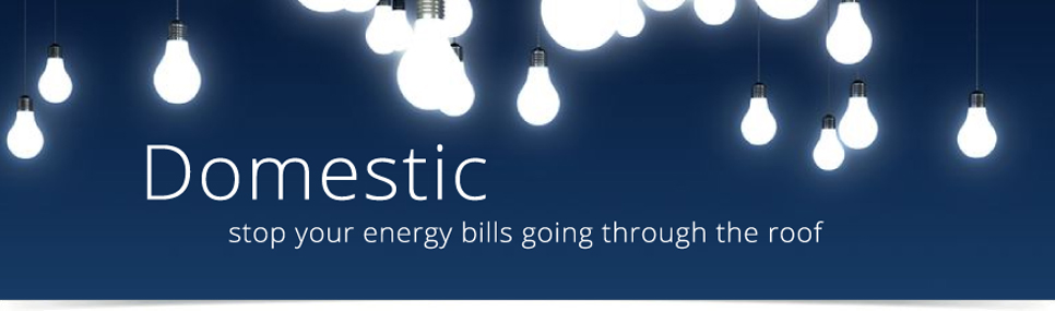 energy-domestic